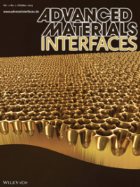 Nanoporous metal array