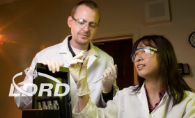 Two scientists examining slide