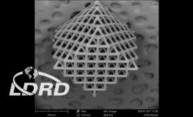 Scanning electron microscopy image of 3D-printed lattice