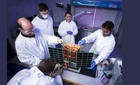Five scientists work on CubeSat