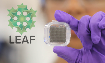LEAF button with advanced manufactured mesh being help by researcher